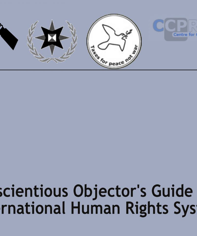 Cover of A Conscientious Objector's Guide to the International Human Rights System'